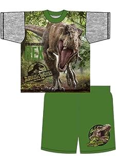 Jurassic World Park Older Boys Pyjamas Shorts T-Shirt Sets 4-5 to 9