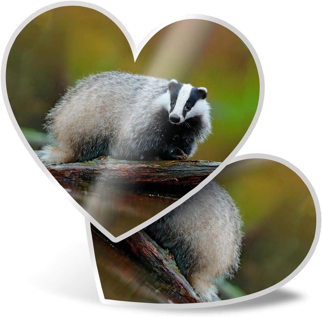 Awesome 2 x Heart Stickers 7.5 cm - Wild Badger Animal Fun Decals for Laptops,Tablets,Luggage,Scrap Booking,Fridges,Cool Gift #15714