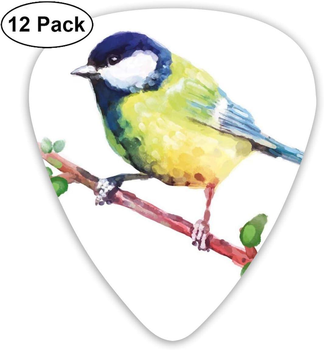 Púas de guitarra – 12 unidades, diseño de pájaro raro Tomtit en una rama, lindo animal, acuarelas del bosque, para bajo eléctrico