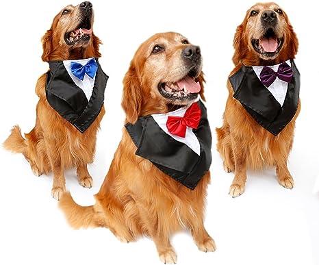 Tofern Perros Collar Lazo corbata boda Disfraz Fiesta mosca ...