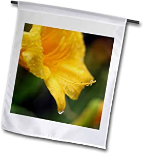3dRose Stamp City - Flowers - Macro Photograph of a Yellow Daylily Immediately After The rain. - 12 x 18 inch Garden Flag (fl_316748_1)