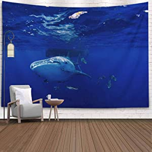 KIOAO Tapestry Wall Art Dorm Tapestry,Tapestry for Women College Tapestry Whale Shark Typus Dorm Room Tapestry 80X60Inch Tapestry for Man