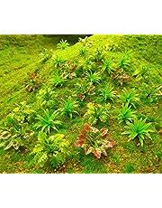 90pcs Mini Model Trees Plants Flowers Green Shrubs Bush Model, Aritificial Plants Model Train Scenery Architecture Flower Model Scenery