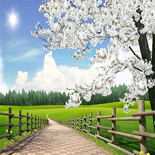 (AOFOTO 10x10ft Spring Farm Scenery Photography Background Blossom Flower Tree Backdrop Rural Fence Walkway Lawn Sunny Blue Sky Park Outdoor Natural Landscape Photo Studio Props Adult Boy Girl Portrait)