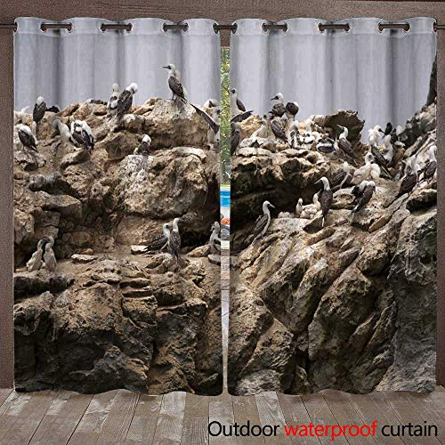 (WinfreyDecor Outdoor Ultraviolet Protective Curtains Bird Colony Nesting on Rock W72 x L84)