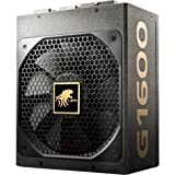 LEPA G Series1600W 80+ Gold Certified Full Modular ATX12V/EPS12V Power Supply SLI and CrossFire Ready 180mm (G1600-MA)