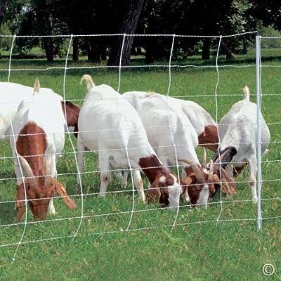 "Premier ElectroStop Goat & Sheep Electric Fence, 42""H x 164' L, Single Spike, WhitePremier Top Seller"