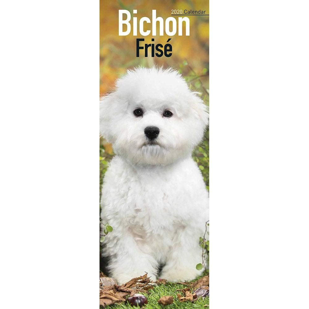 BICHON FRISE DOG CALENDAR 2018 SLIM WALL NEW AND SEALED BY BROWN TROUT