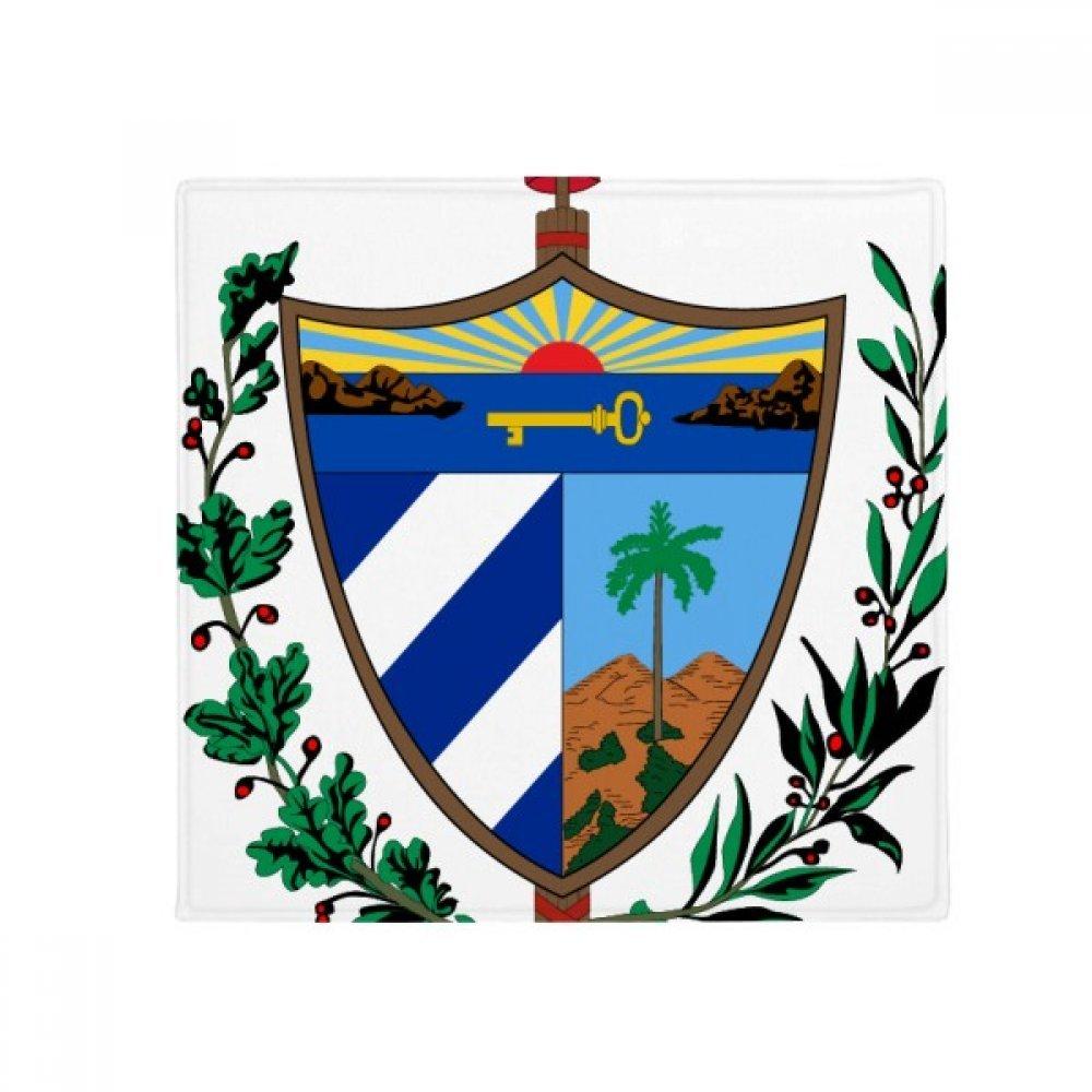 DIYthinker Cuba National Emblem Country Anti-Slip Floor Pet Mat Square Home Kitchen Door 80Cm Gift
