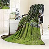 Flannel Fleece Luxury Blanket House Spring Backyard with Roses Patio and Kids Playground with Wooden Swing an Plush Microfiber Solid Blanket(90''x 70'')