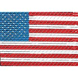 Pexco 4 ft. x 6 ft. American Flag Chain Link Fence Slat Kit by Pexco