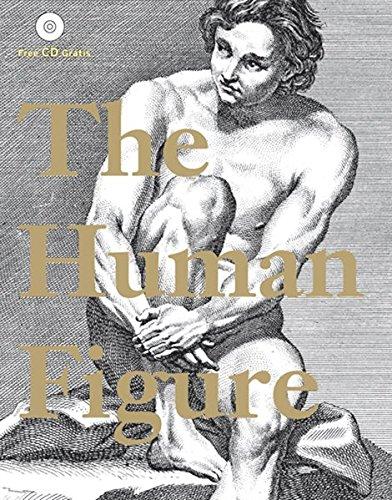 The Human Figure: Der menschliche Koerper (Drawing)