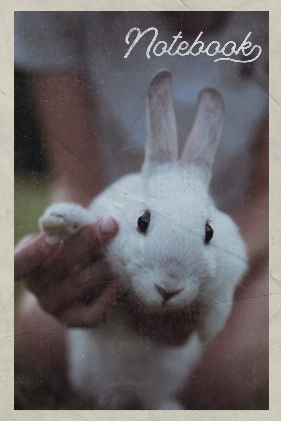 Bunnies For Sale Near Me >> Notebook Rabbit Hutch Nifty Composition Book Journal Diary