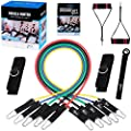 Resistance Band Set - Include 5 Stackable Exercise Bands with Waterproof Carrying Case, Door Anchor Attachment, Legs Ankle Straps and Exercise Guide Ebook - 100% Life Time Guarantee from Fitness Insanity