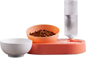 Jemirry Cat Dog Bowls with Raised Stand,15° Tilted Food and Water Bowl Set, Double Pet Bowls Bottle for Small or Medium Size Dogs Cats