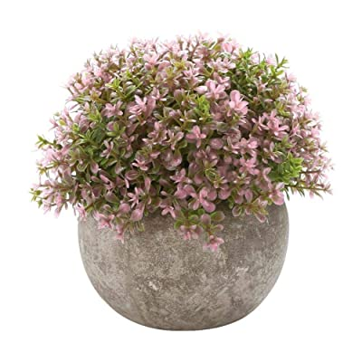 Wustrious Artificial Plant Bonsai Decoration Flower Grass Small Decoration Ball Pot Home manner: Musical Instruments