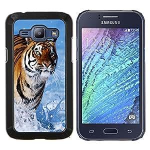 Be-Star Único Patrón Plástico Duro Fundas Cover Cubre Hard Case Cover Para Samsung Galaxy J1 / J100 ( Blue Tiger eau Nature )