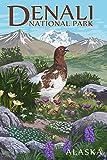 Denali National Park, Alaska - Ptarmigan (9x12 Art Print, Wall Decor Travel Poster)