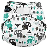 Imagine Baby Products Stay Dry All-in-One Hook and Loop Diaper, Lil Stinker