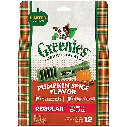 Greenies Pumpkin Spice Flavor Regular