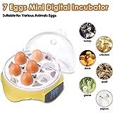 Yescom 7 Eggs Digital Mini Incubator Temperature Control Hatcher Chicken Poultry Duck