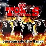 Los Toros De Mexico Caravana De Alto Rango by Los Toros de Mexico