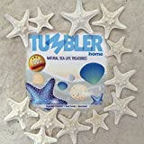 "Tumbler Home Certified Knobby White Starfish 1"" to 2"" set of 12 - Wedding Seashell Craft - Hand Picked and Professionally Packed ..."