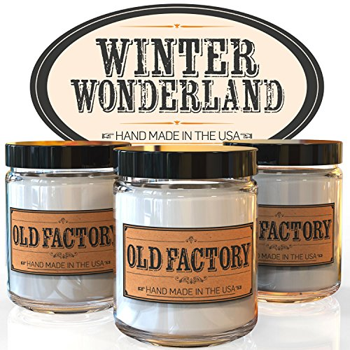 Scented Candles - Winter Wonderland - Set of 3: Hot Cocoa, Roasted Chestnut, and First Snow - 3 x 4-Ounce Soy Candles