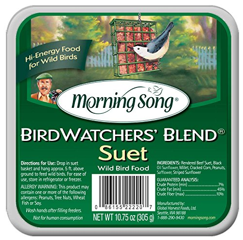 61vhHk8odTL - Morning Song 11431 Birdwatchers' Blend Suet Wild Bird Food, 10.75-Ounce