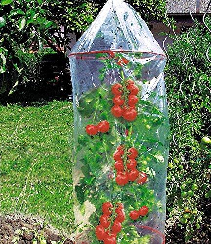 Tomaten Reifehaube Tomatenhaube Mit 2 Ringen 130 Cm Lang 65 O Amazonde Garten