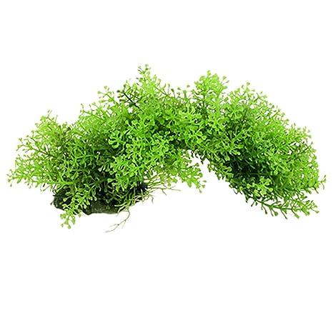 Jardin con Forma de corazón Hojas Arco Estilo Acuario plástico Planta, Mini, Verde