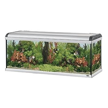ferplast 66991099 Acuario Star 160, agua dulce, medidas: 162 x 62 x h 675 cm, 570 L): Amazon.es: Productos para mascotas