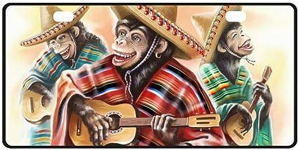 qidushop Monos Divertidos en Vestido Tradicional Mexicano Tocando ...