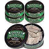 Smokey Mountain Pouches - Wintergreen - 5 Cans