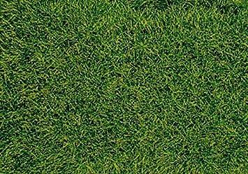 Heki 1573 decovlies-wild grass Suelo de turba: Amazon.es: Juguetes y juegos