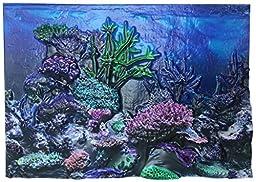 BioBubble 3D Coral Aquarium Background, 20 gal, Multicolor