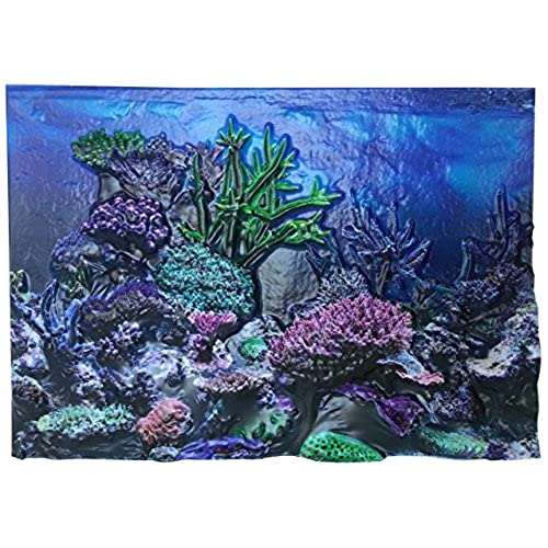 3D Aquarium Background: Amazon.com