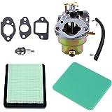 HIPA Carburateur + Joint + Filtre à Air pour Honda GC160 GCV135 GCV160 GC135 Remplace 16100-Z0L-013