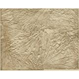 York Wallcoverings Y6180301 Wall Sculpture Leaf Scallop Wallpaper, Beige, Tan
