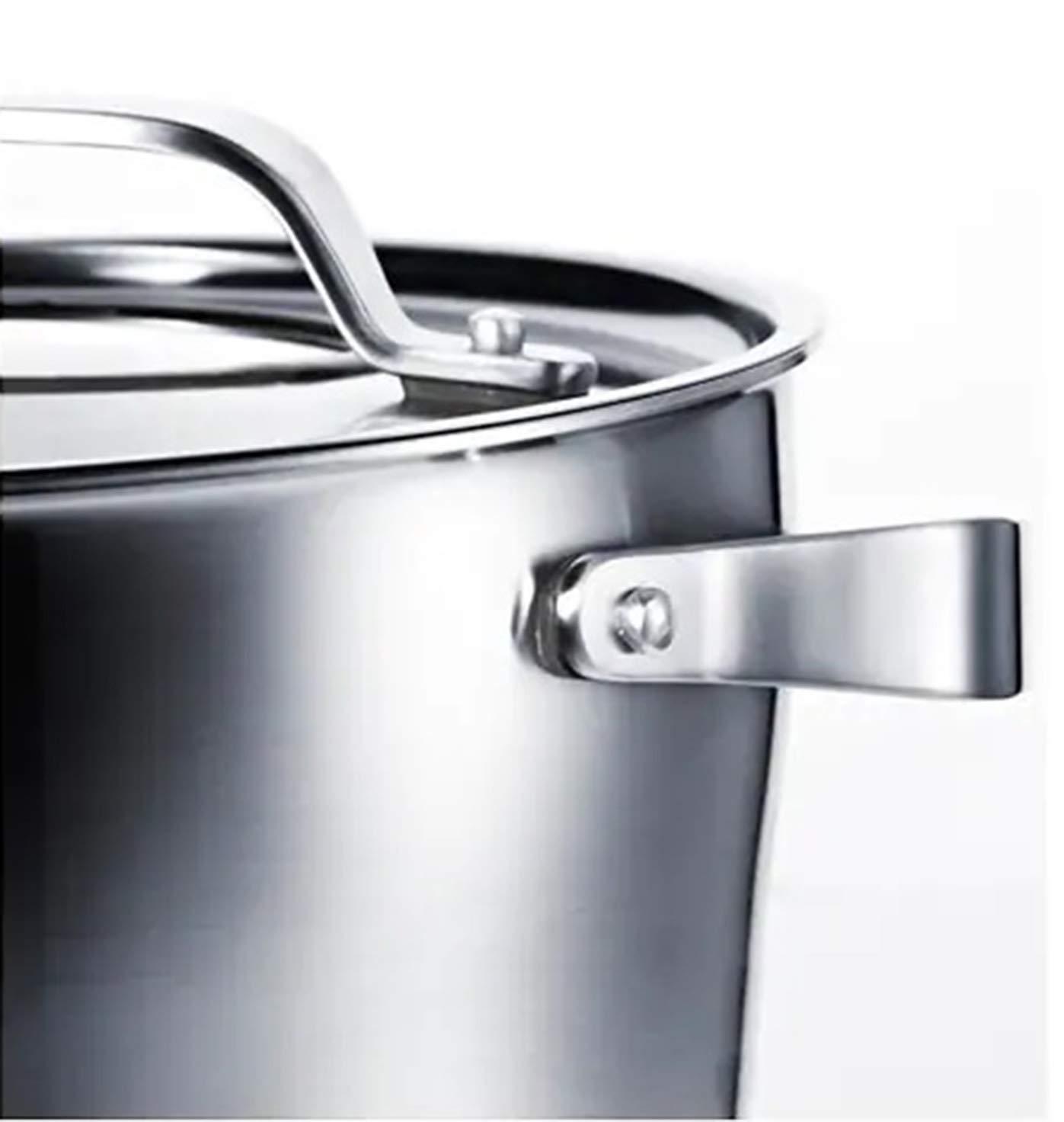 Olla con tapa de acero inoxidable y gris, 5,5 litros, apta ...