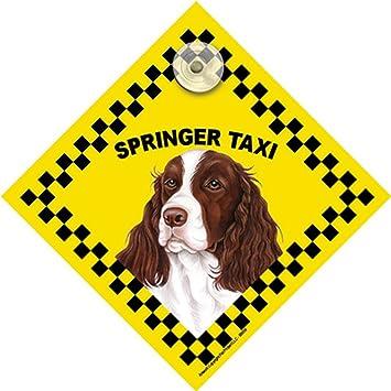 Springer Spaniel perro ventana Swinger Taxi sign: Amazon.es ...