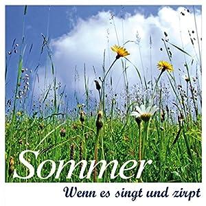 Sommer Hörbuch