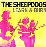 Learn & Burn (Vinyl)