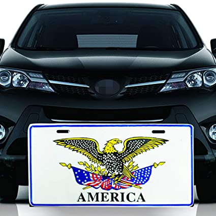 Amazon Com Big Ant Car Decoration Plate Personalized License Plate