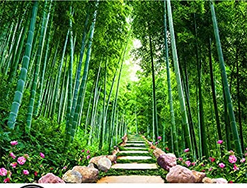 Jonp 3D Großen Tv Wandbild Wallpaper Wallpaper Stein   Bambus Wald Scenic  Wandmalerei Wände Hintergrundbild