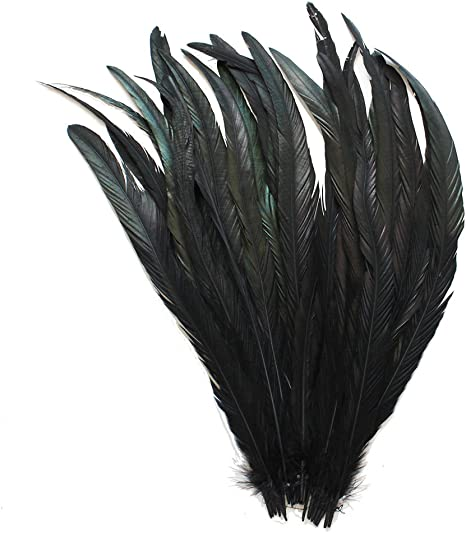 "NEW 25 pcs 12-14/"" long Black Dyed Rooster COQUE tail Feathers for crafting"