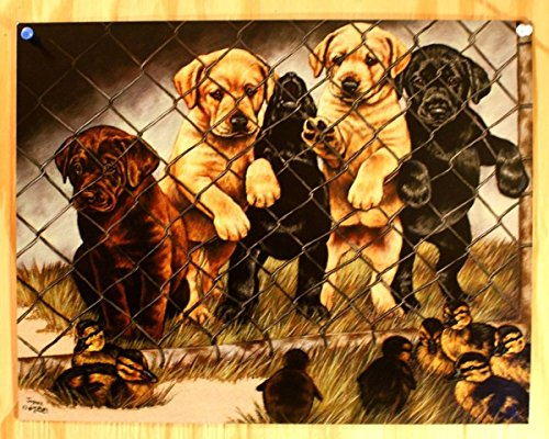 Jail birds Tin Sign by Charles Graham 16 x 13in -