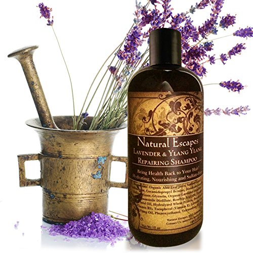 (Lavender & Ylang Ylang Repairing Shampoo | Organic Shampoo for Color Treated Hair, Hair Loss, Dry Hair, Eczema, Psoriasis & More | Sulfate Free Shampoo Leaves Hair Soft & Moisturized | 16oz)