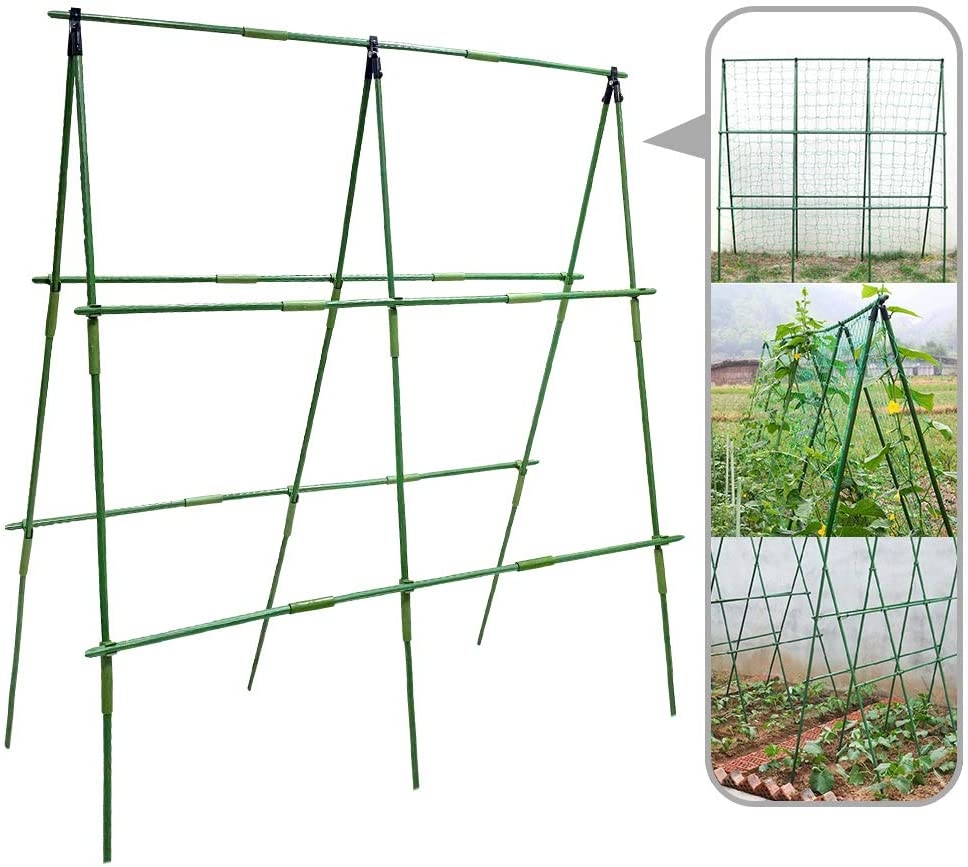 MATTE Tomato Plant Cage Plant Support Plant Stakes Ideal for Growing Tomato Plants,Climbing Fruits and Vegetables