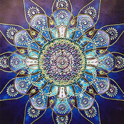 DIY 5D Special Shaped Diamond Painting by Number Kits, Full Drill Rhinestone Embroidery Cross Stitch Pictures for Home Decor - Blue Flower 14x14in (Shaped Number Plates)